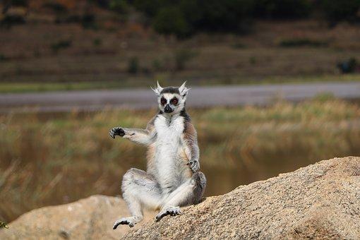 Madagascar, une île paradisiaque
