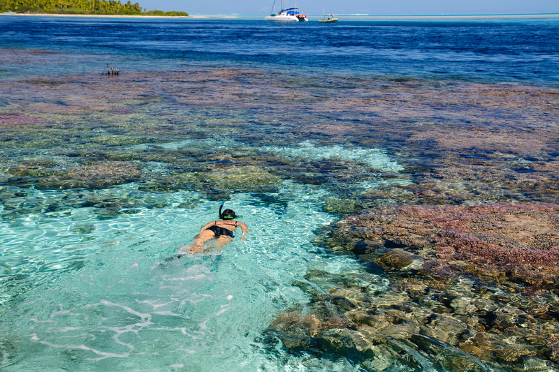 Aventures sous-marines à la découverte des récifs coralliens de la Polynésie